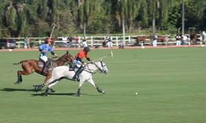 Vem ver a final do Campeonato Brasileiro de Polo em Indaiatuba