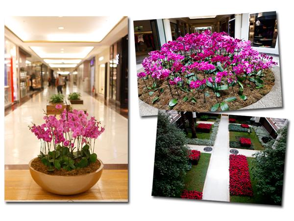 Vem ver a decoraç u00e3o pink do Shopping Iguatemi para outubro rosa u2013 Notas u2013 Glamurama -> Decoração Mesa Outubro Rosa