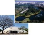 Parque do Ibirapuera, o melhor de todos