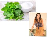 A folha de stevia e a nutricionista Andrea Santa Rosa Garcia