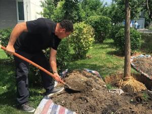 Ronaldo ataca de jardineiro e planta árvore em escola na China