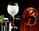 O clássico gin tônica e o drink Edmond Halley, que combina bourbon, Cynar e Brasilberg: hits do novo Tetto rooftop lounge!