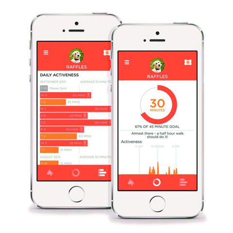 PitPat-Dog-Tracker-App-Large