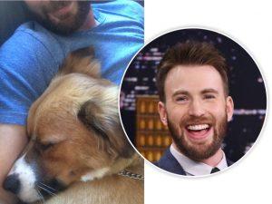 Chris Evans comove a web com possível morte de seu cão, mas calma lá…
