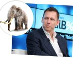 Peter Thiel e mamute-lanoso