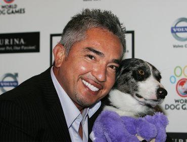 """Cesar Millan, o """"encantador de cães"""", lança linha de audiobooks só para os dogs"""