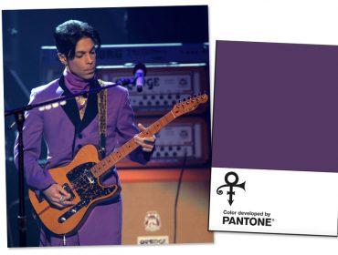 Irmã de Prince diz em entrevista que a cor favorita do artista não era a púrpura
