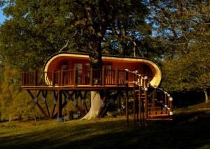 Imagine só morar numa casa luxuosa na árvore e ainda eco-friendly? Olha só!