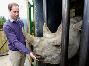 Príncipe William fez um inusitado amigo em parque inglês…