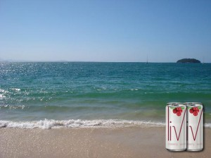 Glamurama ensina a fazer os drinks que vão refrescar o verão
