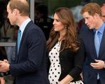 Príncipe Harry anda espalhando que o bebê de Kate vai vestir azul…