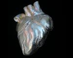 Lá em Casa: coração da Loja do Bispo acelera os batimentos cardíacos
