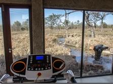 Cinco estrelas na África do Sul oferece fitness center no meio da savana