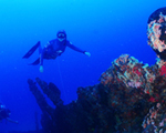 Dica Suzuki Grand Vitara: descubra as belezas históricas do Mar de Naufrágios!