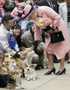 Corgis: será o fim dos cachorrinhos preferidos da rainha Elisabeth II?