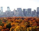 Brasileira expõe imagens de Manhattan com fotógrafos do mundo todo