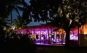 Depois de Trancoso, Cafe de la Musique vai abrir filiais em NY e mais 12 cidades brasileiras