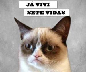 Grumpy Cat vai lançar seu livro no Brasil – e espalhar seu mau humor