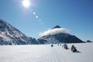 Cansado do calor? Glamurama mostra um roteiro de um safári pelo Ártico