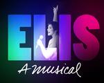"""Assista ao espetáculo """"Elis, A Musical"""" com pontos Multiplus. Saiba mais"""