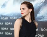 Aprenda a fazer o penteado com efeito molhado de Emma Watson