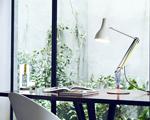 Seu escritório mais charmoso com a criação de Paul Smith