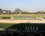 GP Brasil, Jockey Club do Rio: mimos para glamurettes na tribuna de honra