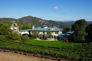 Herança de vida, vinícola de Robin Williams segue à venda na Califórnia