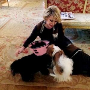 Herança de Joan Rivers será dividida também entre seus cachorros