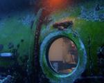 Cientistas se mudam para debaixo do mar em prol da natureza. Oi?