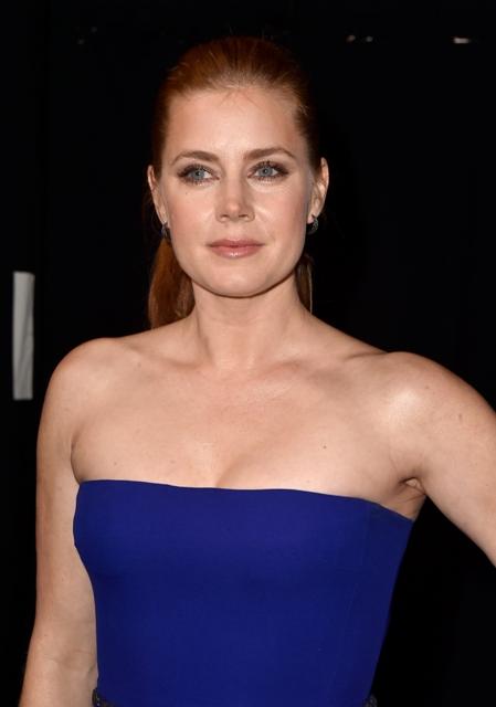 Amy Adams apareceu com o cabelo preso e a maquiagem da noite: boca nude e olhos marcados    Créditos: Getty Images