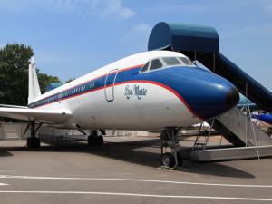 Jatos que pertenceram a Elvis Presley vão a leilão por R$ 27 milhões