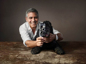"""Cachorrinho de Clooney faz aulas de atuação: """"Ele quer me apagar"""""""