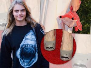 Tubarões estão na crista da onda da moda. Vai apostar no bicho?