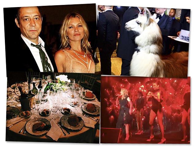 O baile de gala da amfAR teve Cher, Kate Moss e Amora, a lhama do anfitrião Dinho Diniz||Créditos: Paulo Freitas/Reprodução Instagram