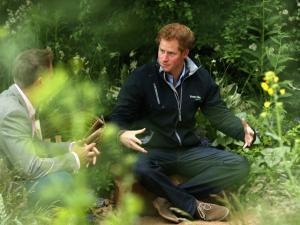 Harry suja as mãozinhas reais em festival de jardinagem