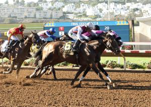 Bilionário brasileiro lucra com vitória de cavalo argentino