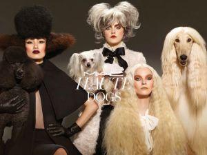 M.A.C lança coleção inspirada na beleza dos cachorros. Oi?