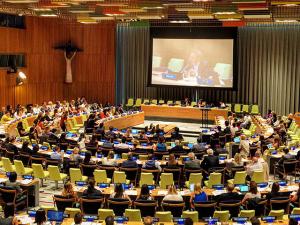 Filipe Sabará, da Arcah, representa o Brasil em evento da ONU