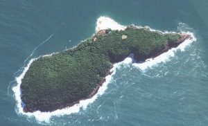 BrazilFoundation vai leiloar ilha no litoral paulista de 192 mil m²