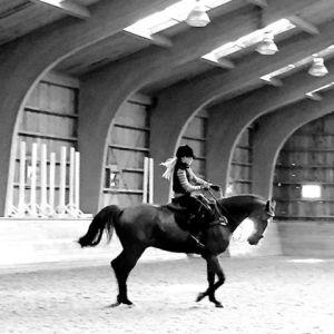 Madonna curte dia de folga nos Hamptons com seus cavalos
