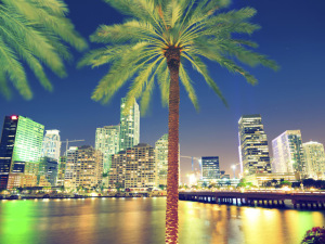 Giro insider: 20 dicas de Miami fora do eixo turístico. Boa viagem!