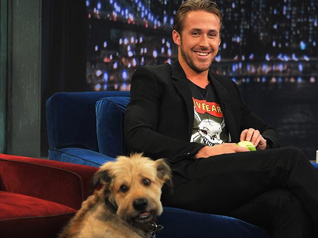 Ryan Gosling e seu cão George no Late Night With Jimmy Fallon, em 2011