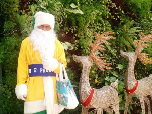 Papai Noel verde e amarelo anima as ruas da Oscar Freire