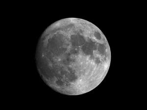 Lua Cheia em Virgem promete semana a mil por hora