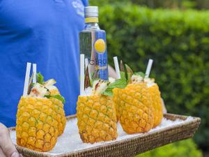 Glamurama elege os drinks do Carnaval by Cîroc. Cheers!