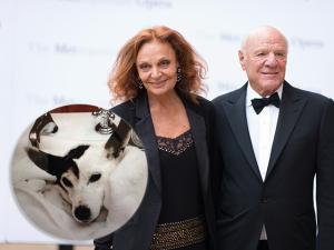 Diane von Fürstenberg e seu marido bilionário clonaram o cachorro