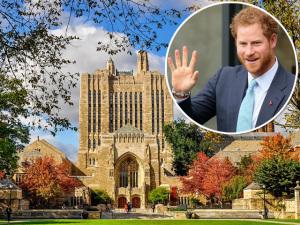 Príncipe Harry vai para Yale cursar Direito e encontrar noiva americana?