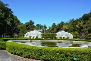Florense leva turma do décor em visita guiada pelo Jardim Botânico