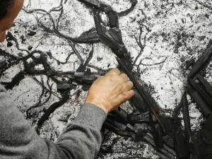 Galeria americana de Vik Muniz dedica todo seu stand a ele: espie!